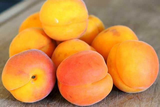 Хранение свежих абрикосов в холодильнике
