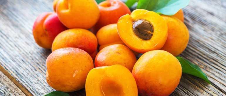 Как правильно заготовить абрикосы в морозильной камере
