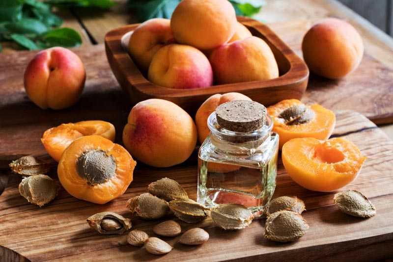 Срок хранения абрикосовых косточек
