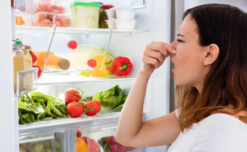 Причины появления неприятного запаха в холодильнике