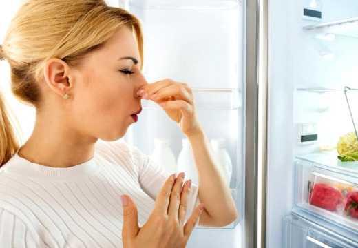 Плохой запах в холодильнике Ноу-Фрост