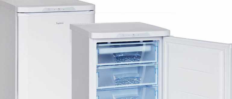 Обзор популярных моделей морозильных камер «Бирюса»