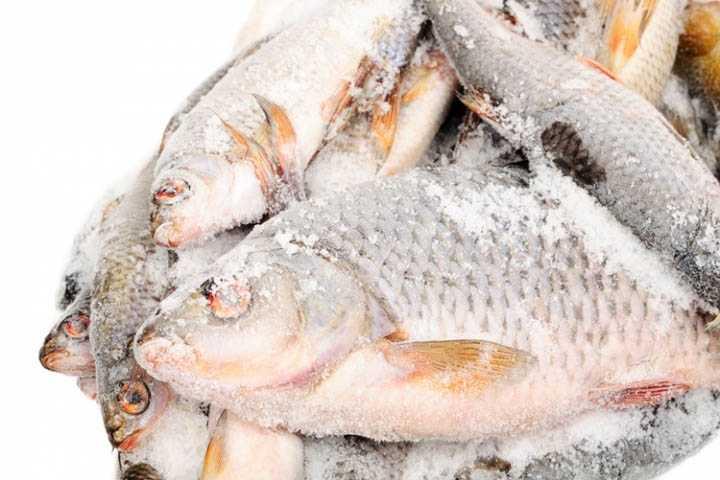 Срок хранения рыбы в морозильной камере