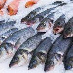 Особенности хранения рыбы в сыром и готовом виде