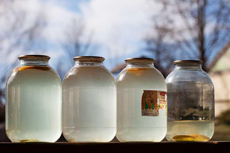 Хранение берёзового сока