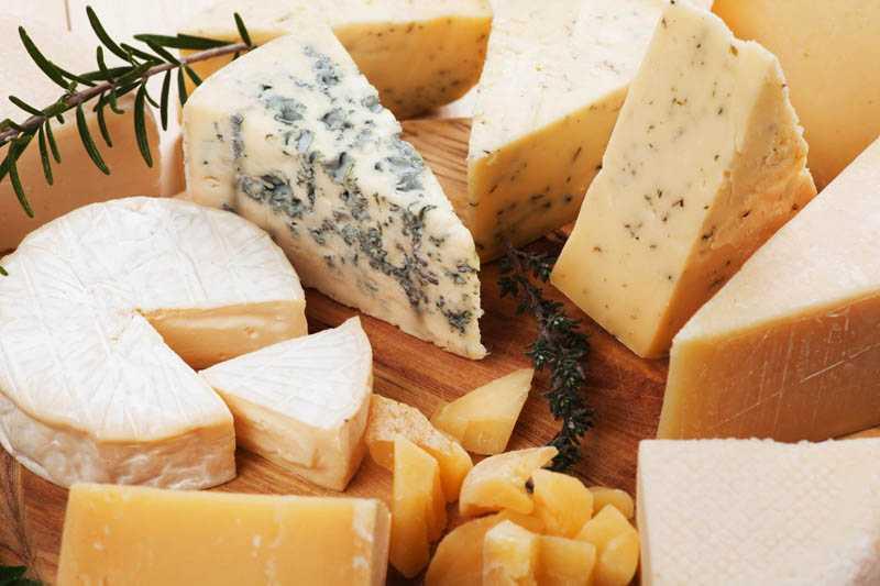 Как хранить сыр без холодильника