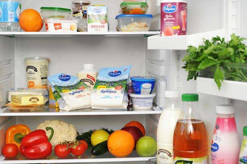 Влияние горячей еды на работу холодильника