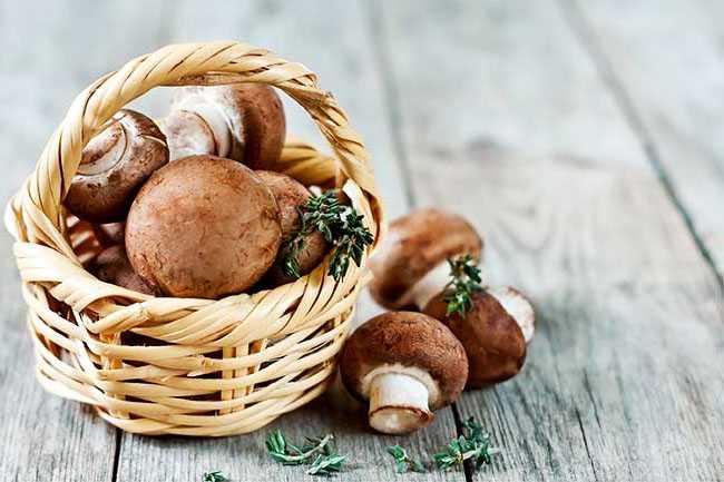 Какие грибы можно заморозить