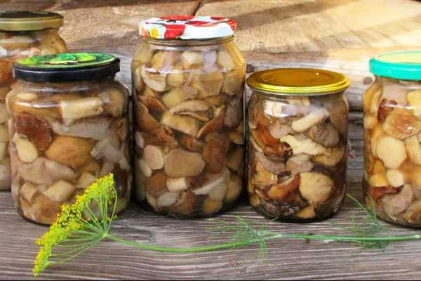 Консервация свежих грибов