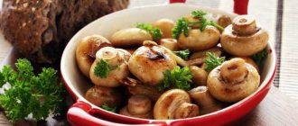 Правила заморозки и хранения свежих грибов