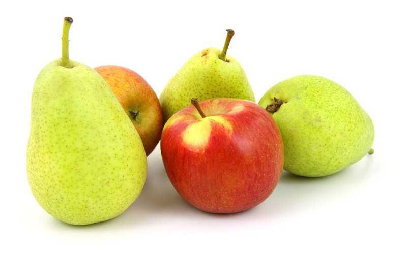 Хранение яблок и груш в морозильной камере