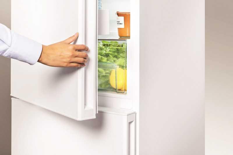 Советы мастера по выбору холодильника