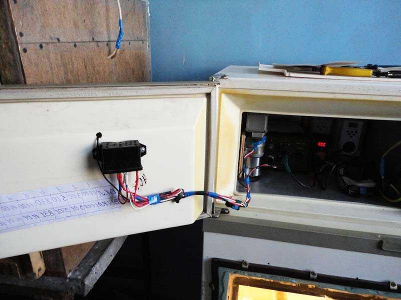 Как сделать инкубатор своими руками