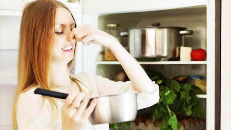Профилактика появления плохого запаха в холодильнике