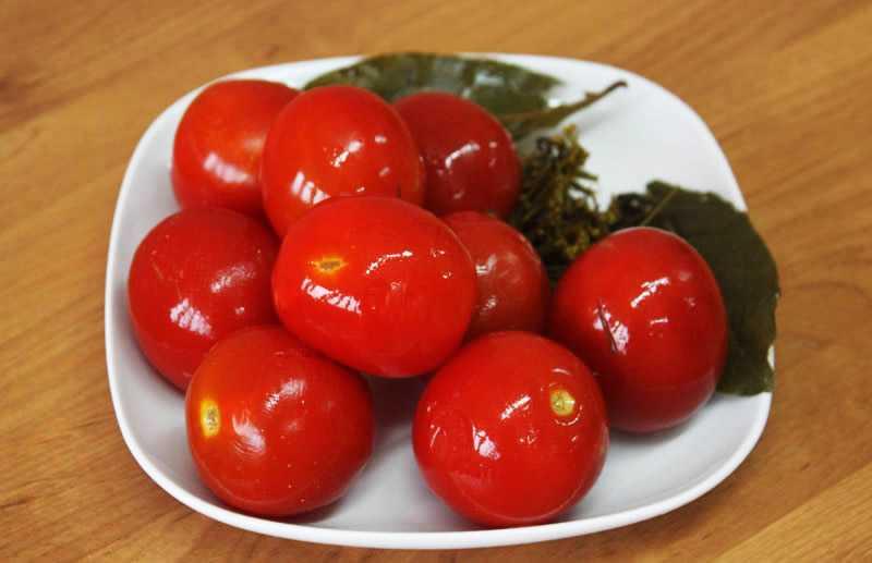 Рецепты солёных помидоров