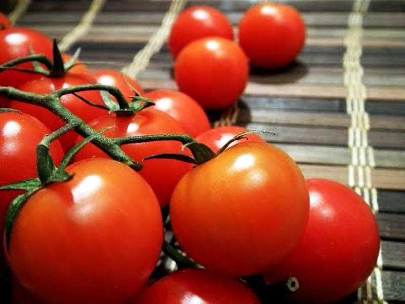 Хранение помидоров в свежем виде