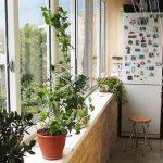Можно ли ставить и эксплуатировать холодильник на балконе зимой
