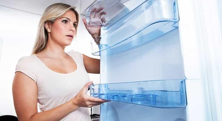 Почему в холодильнике появляется плесень
