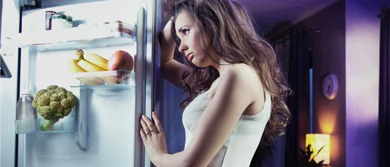Почему гудит холодильник: причины