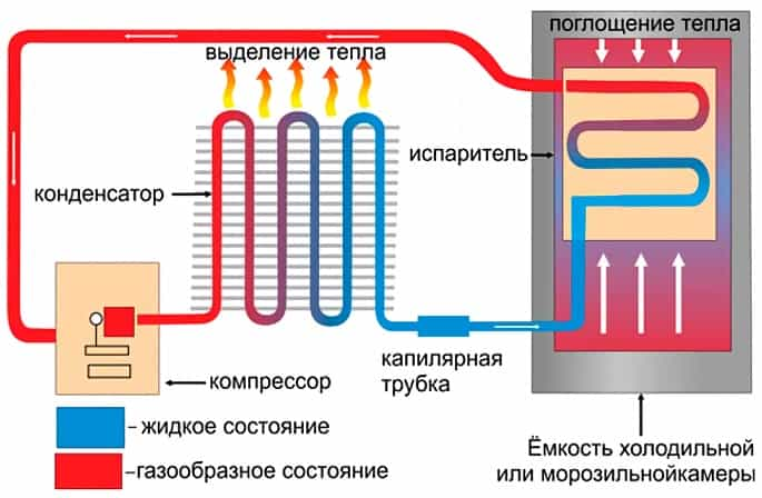 схема морозилки