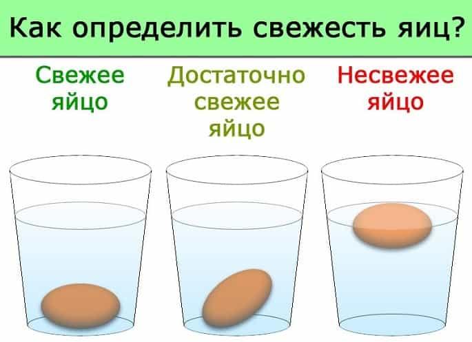свежесть яиц