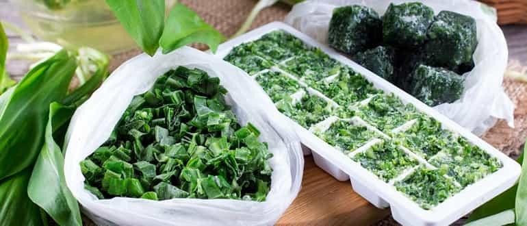 Как хранить зелень в холодильнике на зиму