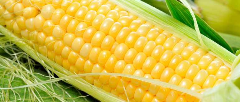 Как долго может храниться кукуруза в холодильнике и без него