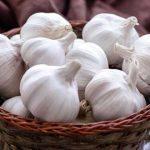 Можно ли держать чеснок в холодильнике: 10 способов хранения овоща