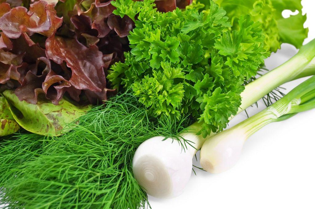 Свежая вымытая зелень