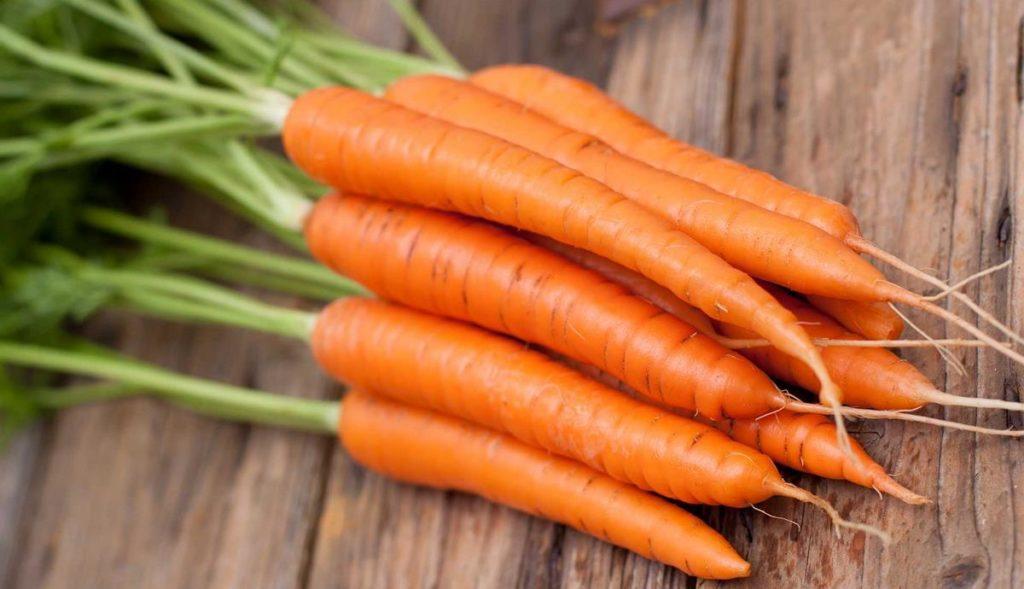 Как нужно хранить семена моркови