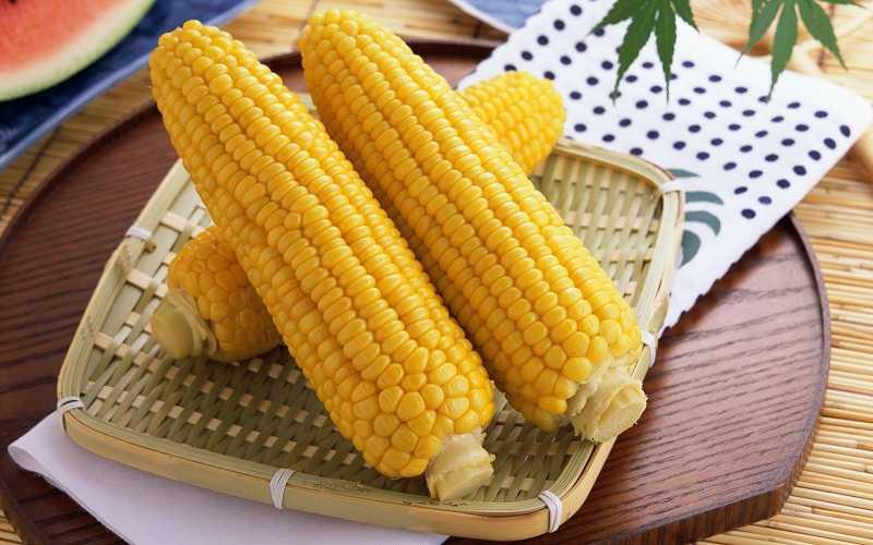 Как нужно хранить ядрышки кукурузы для посадки