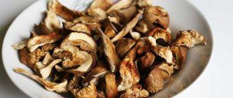 Как хранить сушёные грибы в домашних условиях