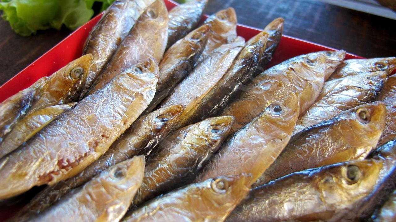 Заморозка рыбы холодного копчения