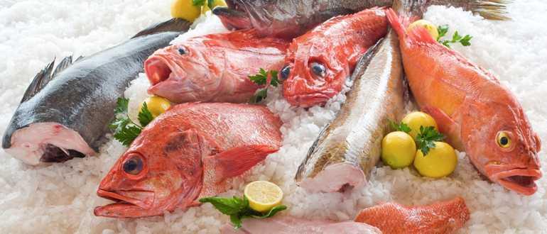 Сколько хранится в холодильнике сырая и обработанная рыба