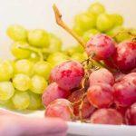Подготовка и хранение гладиолусов в холодильнике